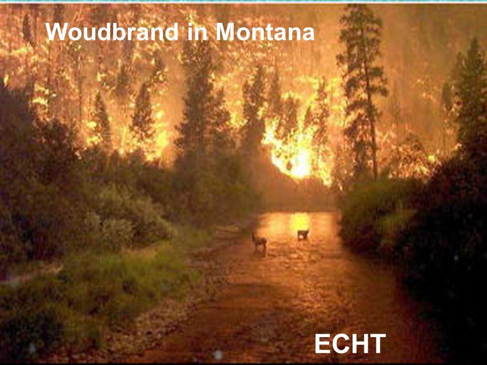 Woudbrand in Montana ECHT