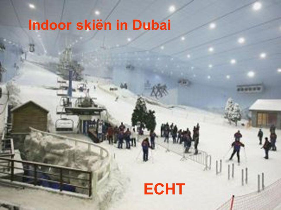Indoor skiën in Dubai ECHT