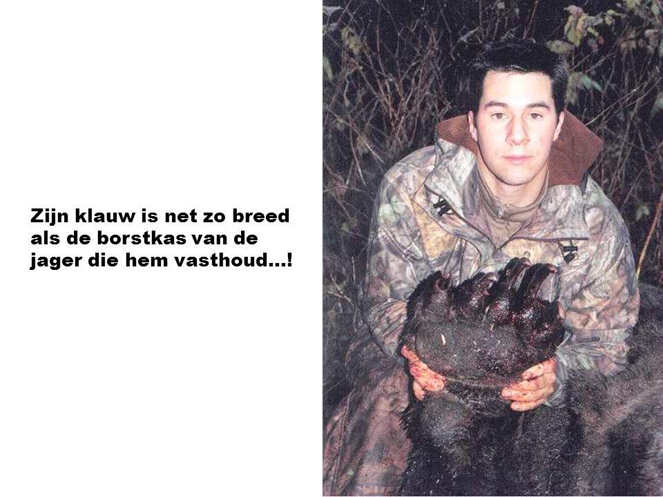 Zijn klauw is net zo breed als de borstkas van de jager die hem vasthoud…!