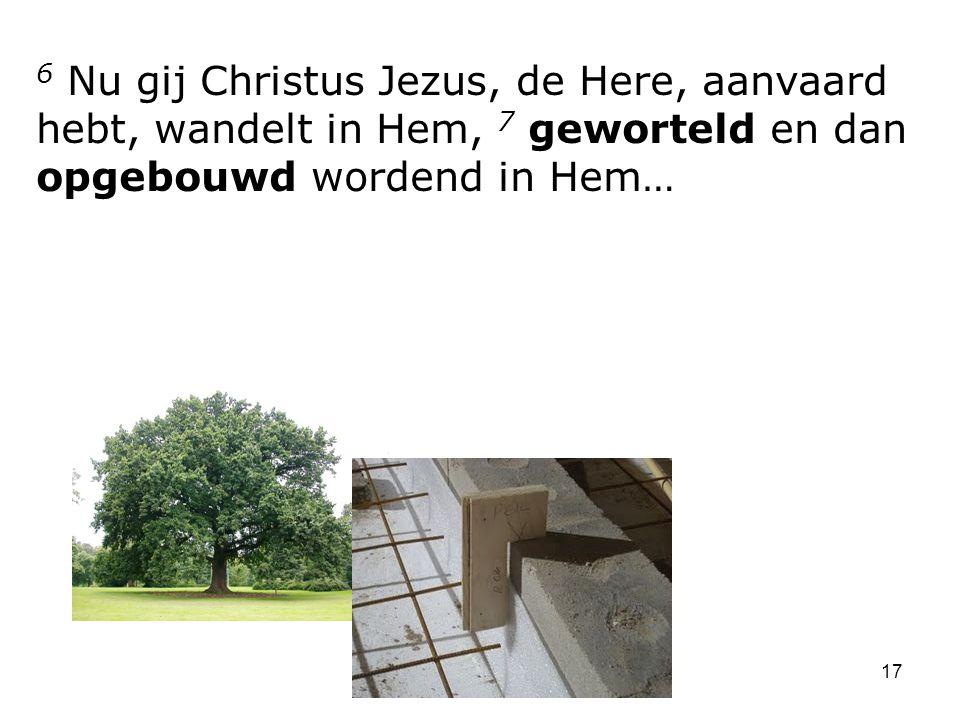 6 Nu gij Christus Jezus, de Here, aanvaard hebt, wandelt in Hem, 7 geworteld en dan opgebouwd wordend in Hem…