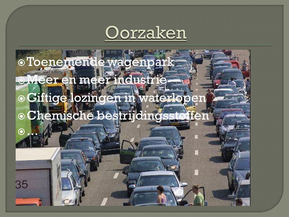 Oorzaken Toenemende wagenpark Meer en meer industrie