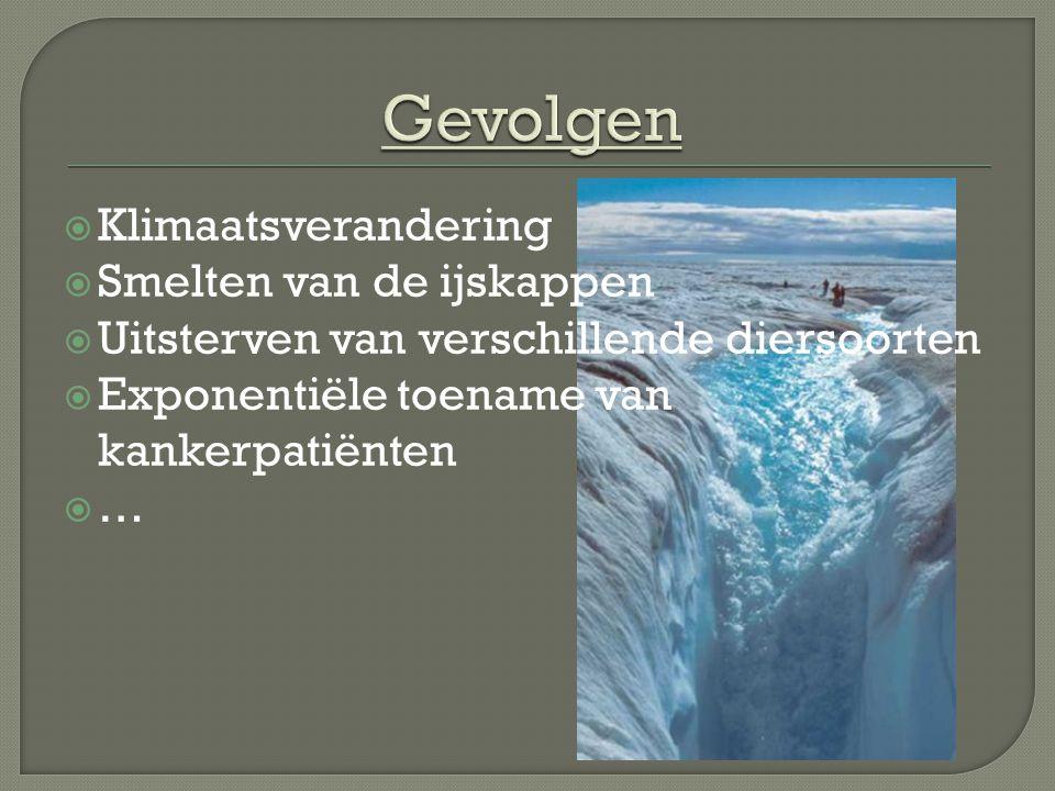 Gevolgen Klimaatsverandering Smelten van de ijskappen