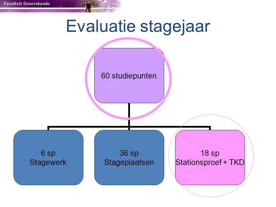 Evaluatie stagejaar