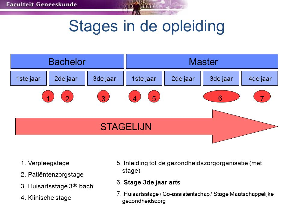 Stages in de opleiding Bachelor Master STAGELIJN 1 2 3 4 5 6 7