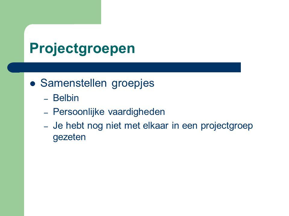Projectgroepen Samenstellen groepjes Belbin Persoonlijke vaardigheden