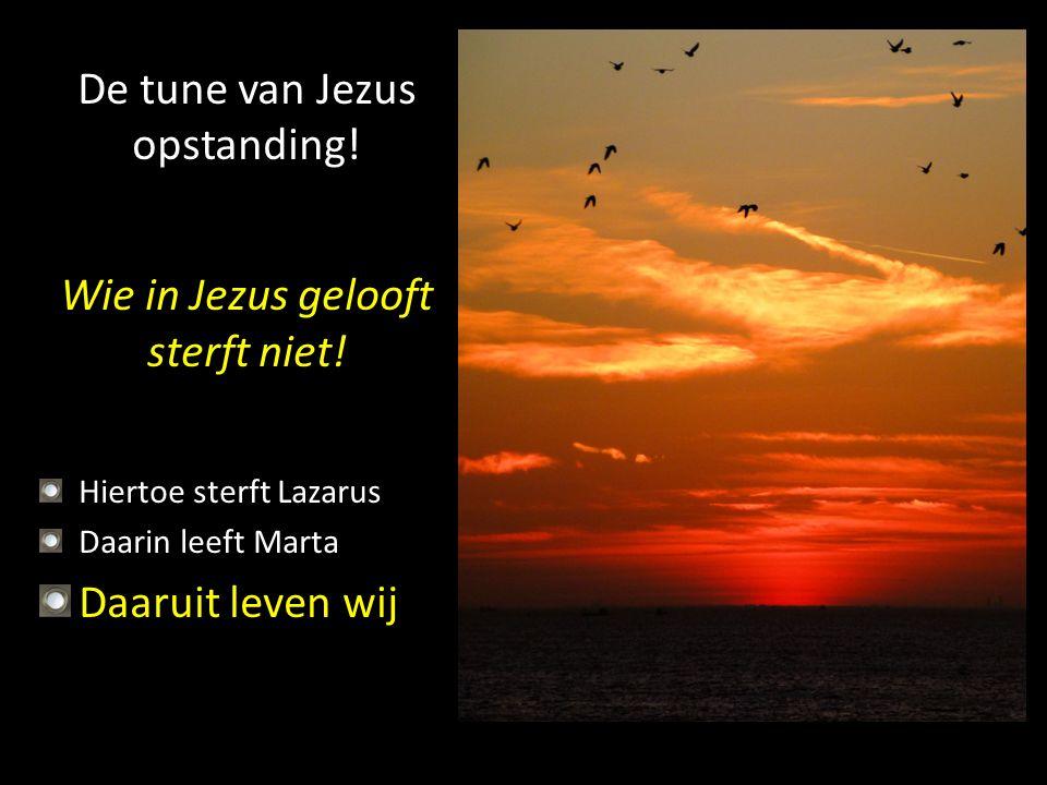 De tune van Jezus opstanding!