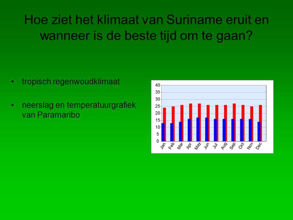 Hoe ziet het klimaat van Suriname eruit en wanneer is de beste tijd om te gaan