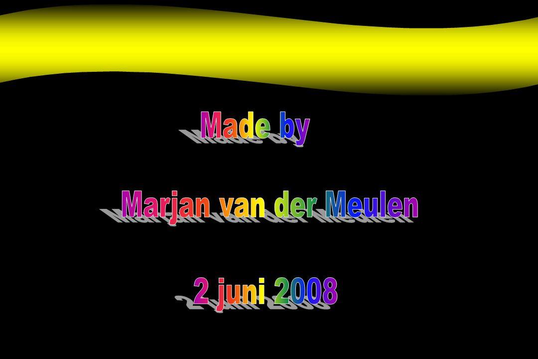 Made by Marjan van der Meulen 2 juni 2008