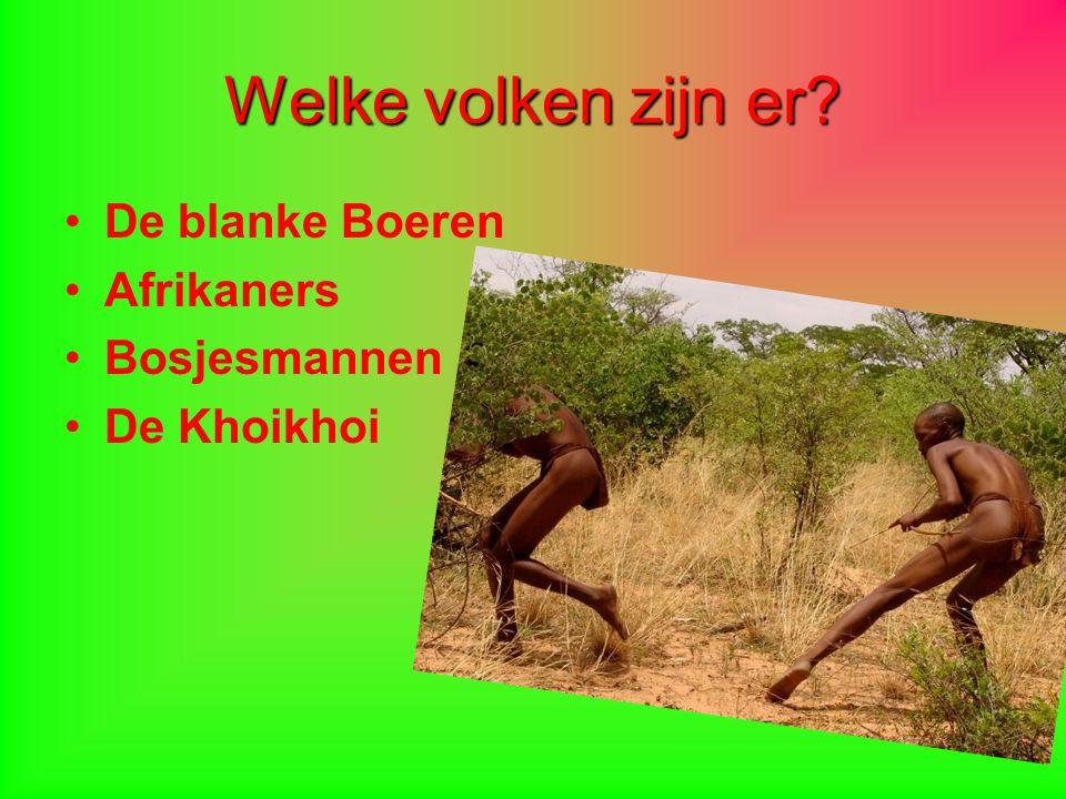 Welke volken zijn er De blanke Boeren Afrikaners Bosjesmannen