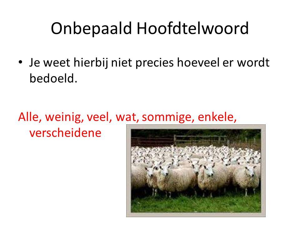 Onbepaald Hoofdtelwoord