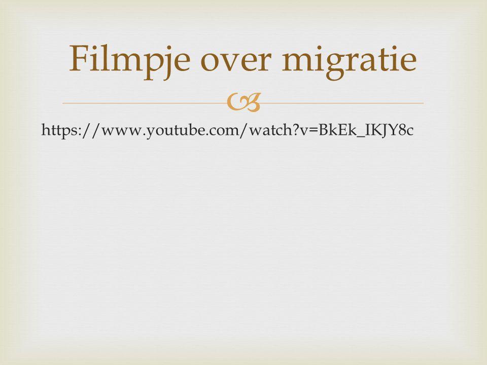 Filmpje over migratie https://www.youtube.com/watch v=BkEk_IKJY8c