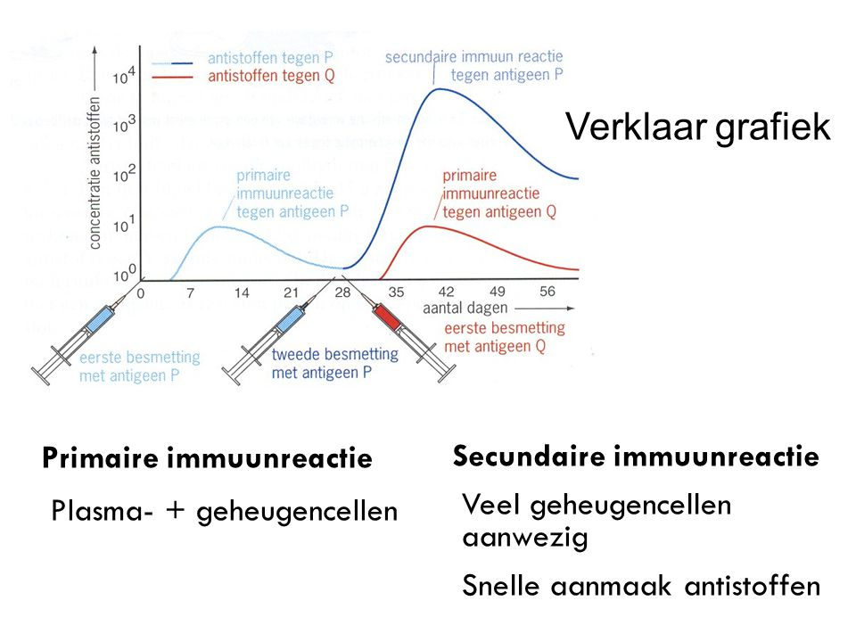 Verklaar grafiek Primaire immuunreactie Plasma- + geheugencellen