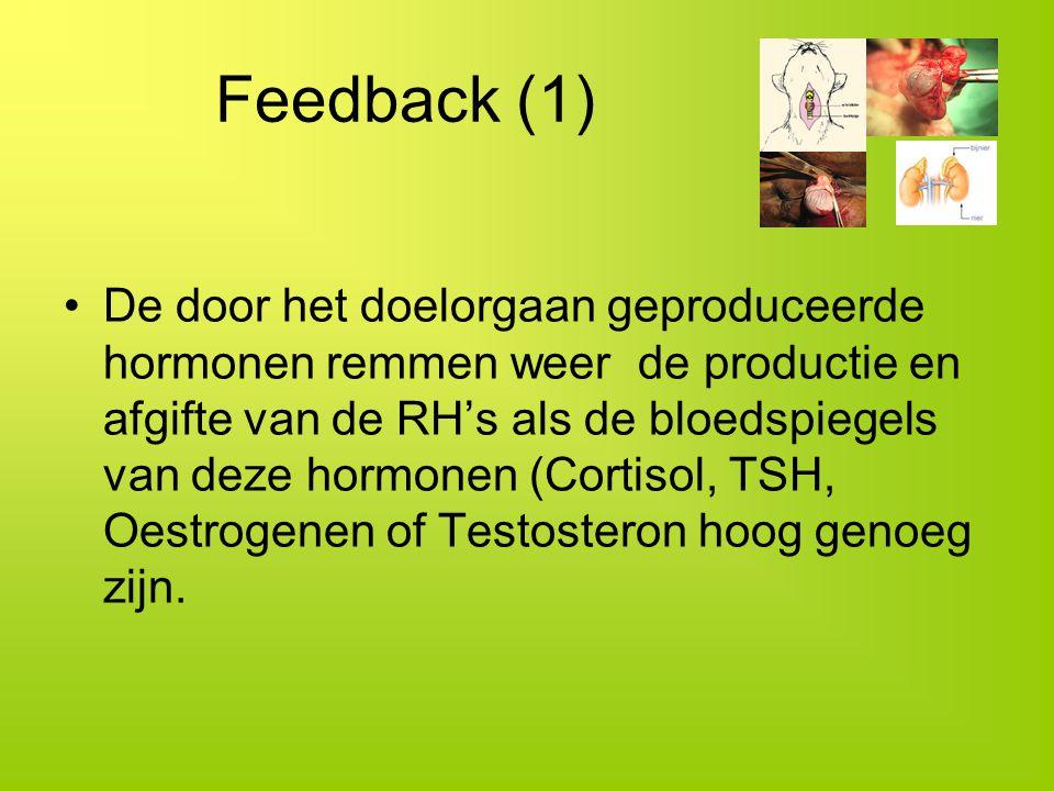 Feedback (1)