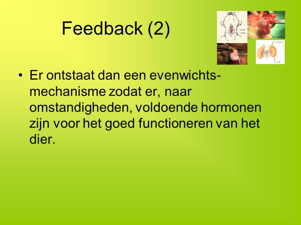 Feedback (2)