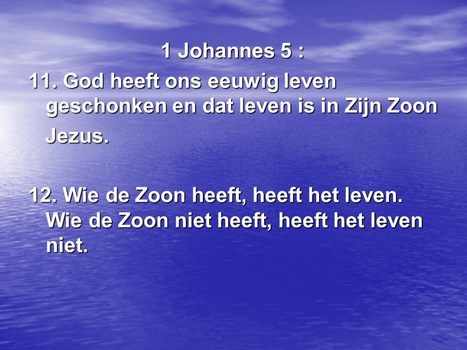 1 Johannes 5 : 11. God heeft ons eeuwig leven geschonken en dat leven is in Zijn Zoon. Jezus.