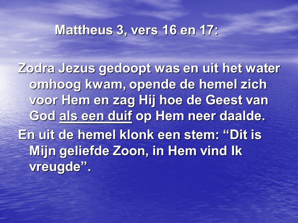 Mattheus 3, vers 16 en 17: