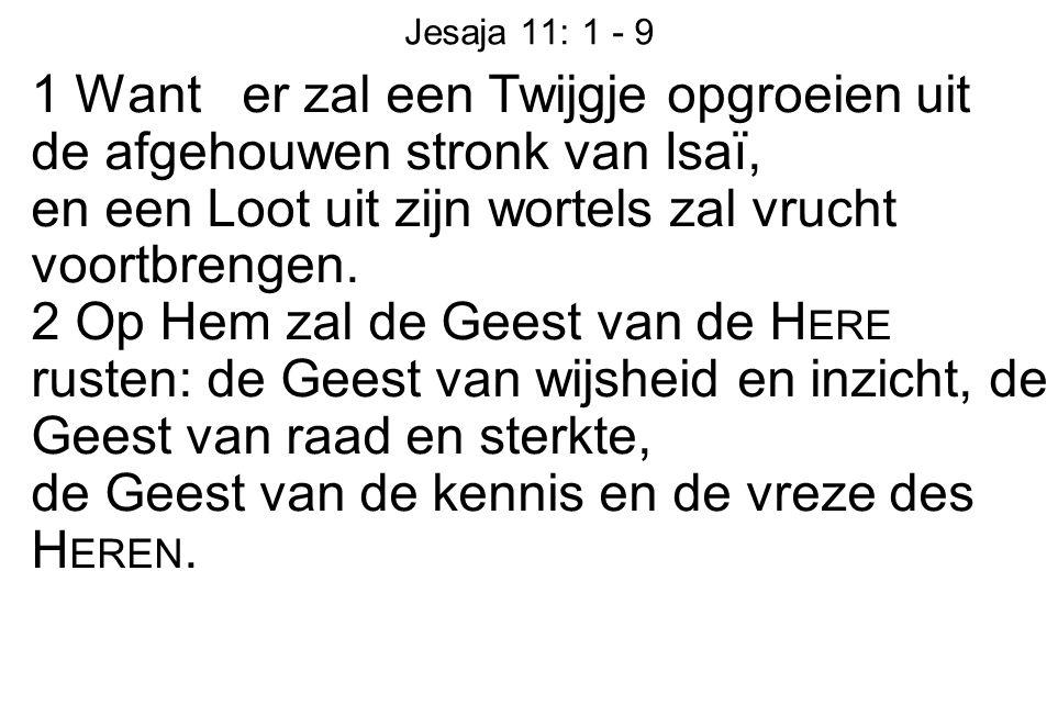 Jesaja 11: 1 - 9