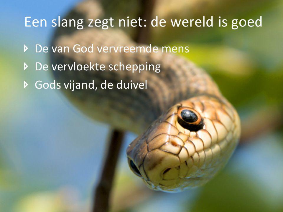 Een slang zegt niet: de wereld is goed
