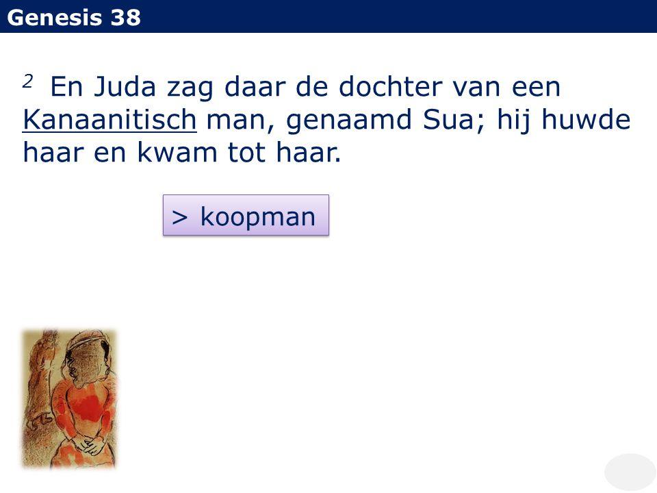 Genesis 38 2 En Juda zag daar de dochter van een Kanaanitisch man, genaamd Sua; hij huwde haar en kwam tot haar.