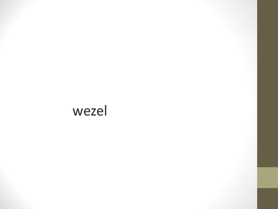 wezel