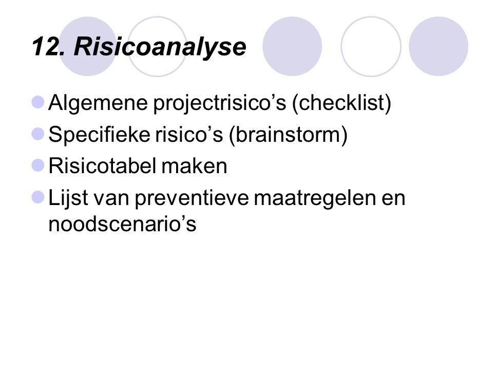 12. Risicoanalyse Algemene projectrisico's (checklist)