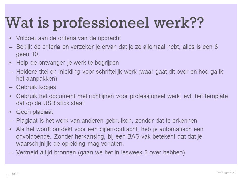 Wat is professioneel werk