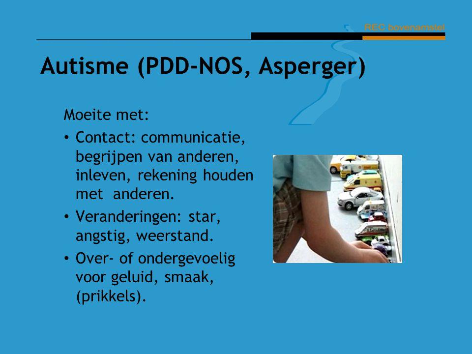 Autisme (PDD-NOS, Asperger)