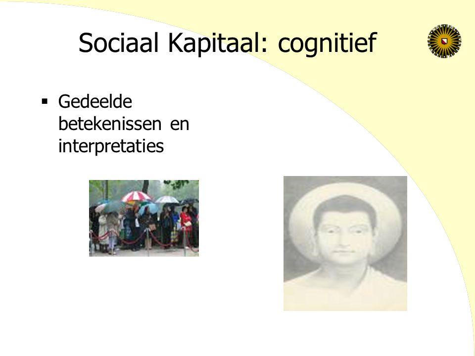 Sociaal Kapitaal: cognitief