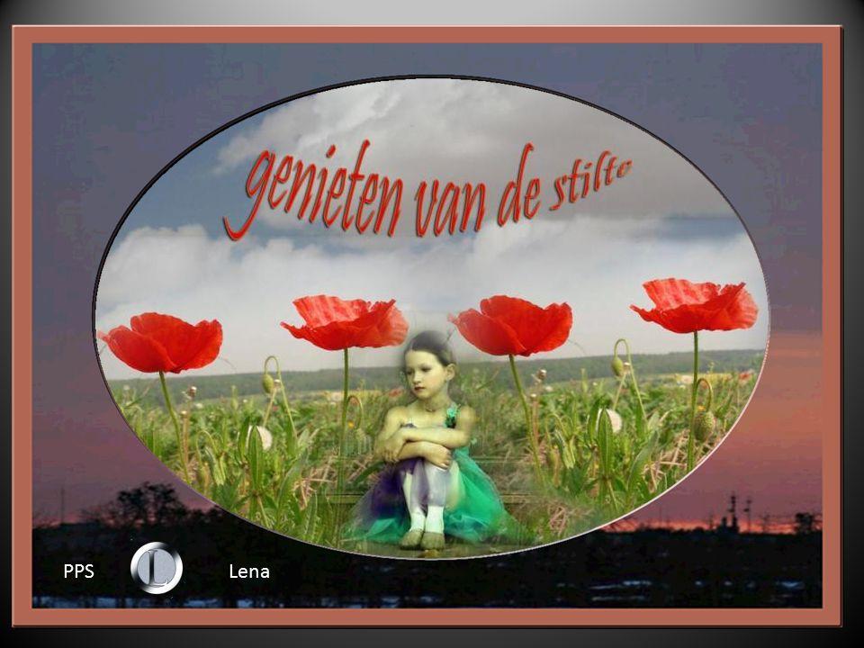 PPS Lena