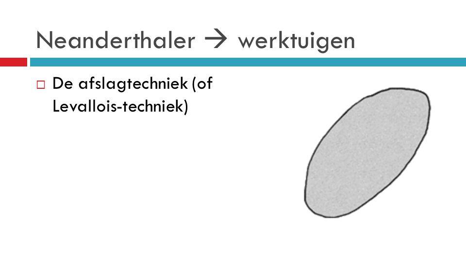 Neanderthaler  werktuigen