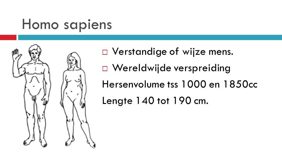Homo sapiens Verstandige of wijze mens. Wereldwijde verspreiding