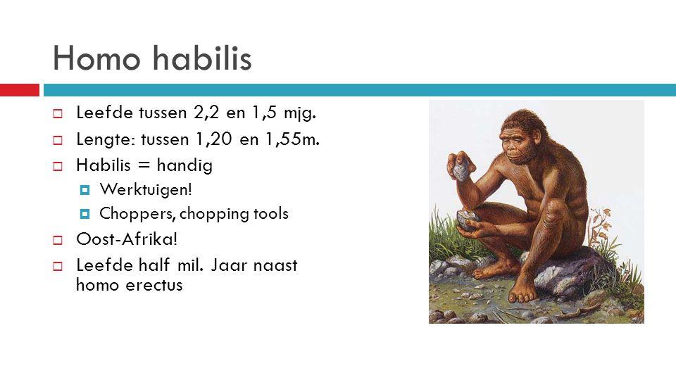 Homo habilis Leefde tussen 2,2 en 1,5 mjg.