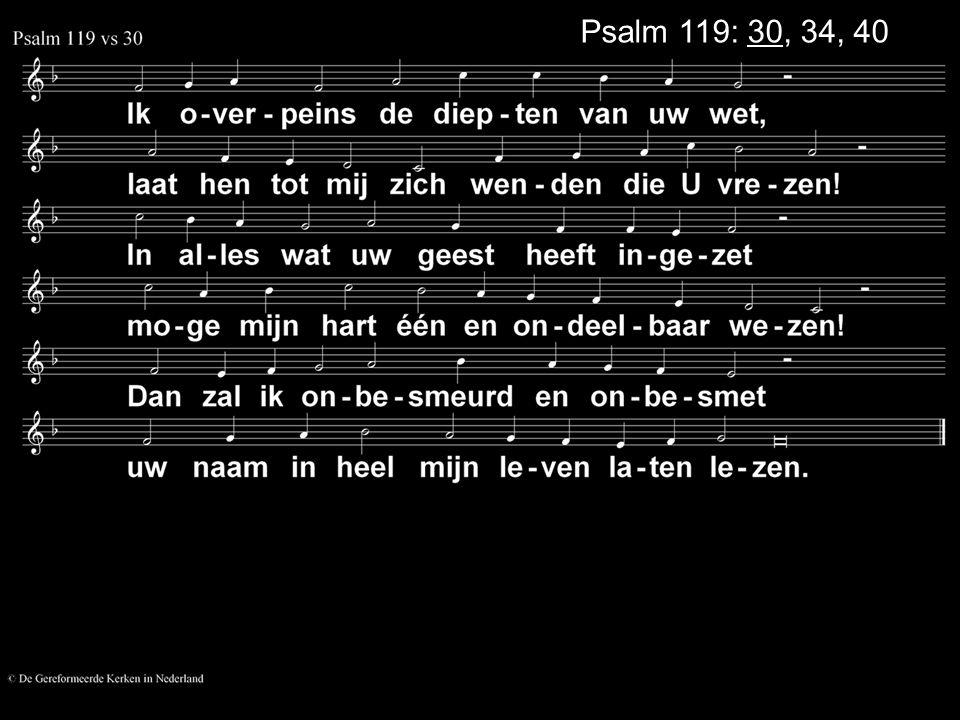 Psalm 119: 30, 34, 40