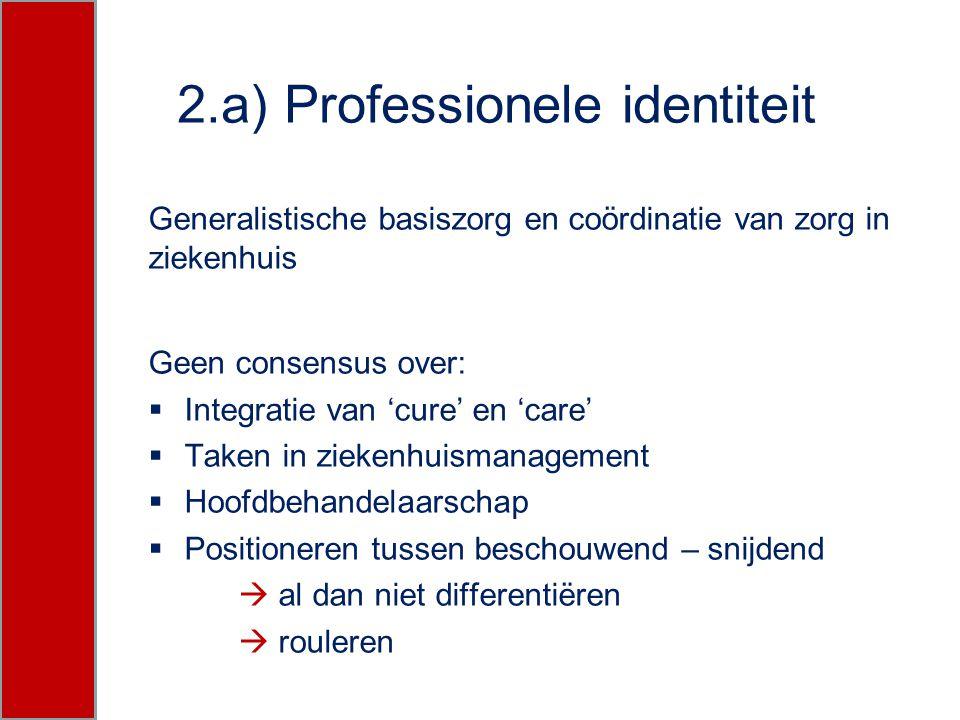 2.a) Professionele identiteit