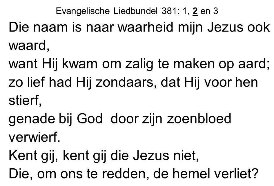 Evangelische Liedbundel 381: 1, 2 en 3