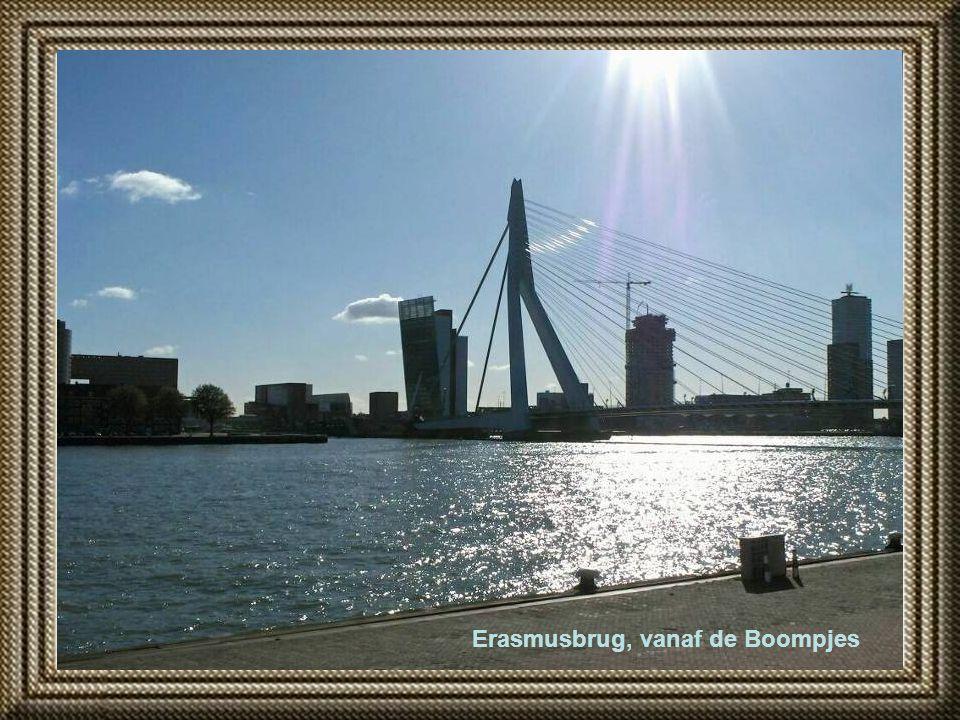 Erasmusbrug, vanaf de Boompjes