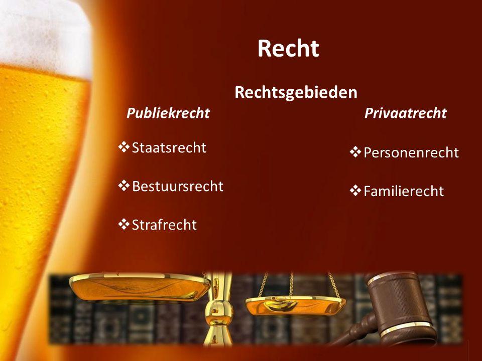 Recht Rechtsgebieden Publiekrecht Privaatrecht Staatsrecht