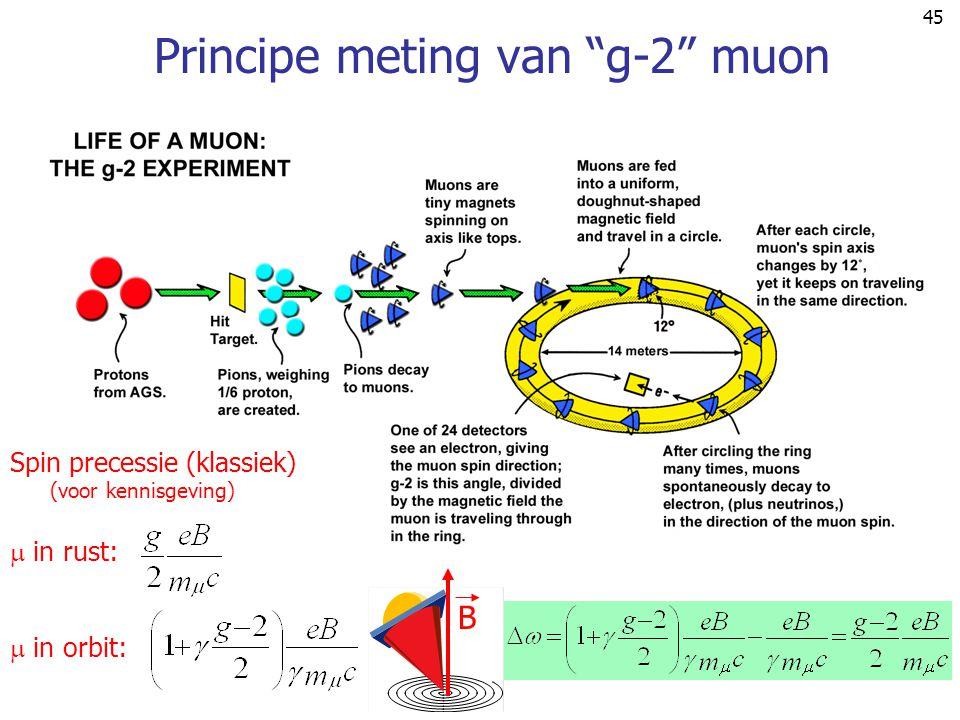 Principe meting van g-2 muon