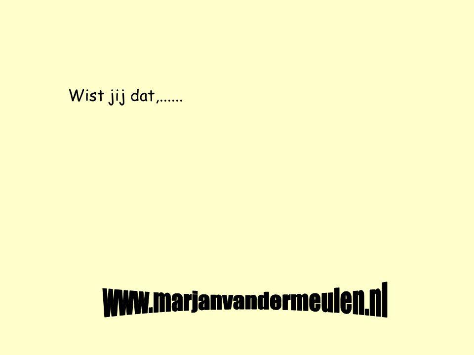Wist jij dat,...... www.marjanvandermeulen.nl