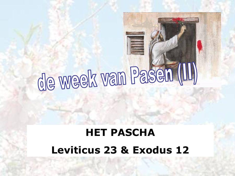 de week van Pasen (II) HET PASCHA Leviticus 23 & Exodus 12