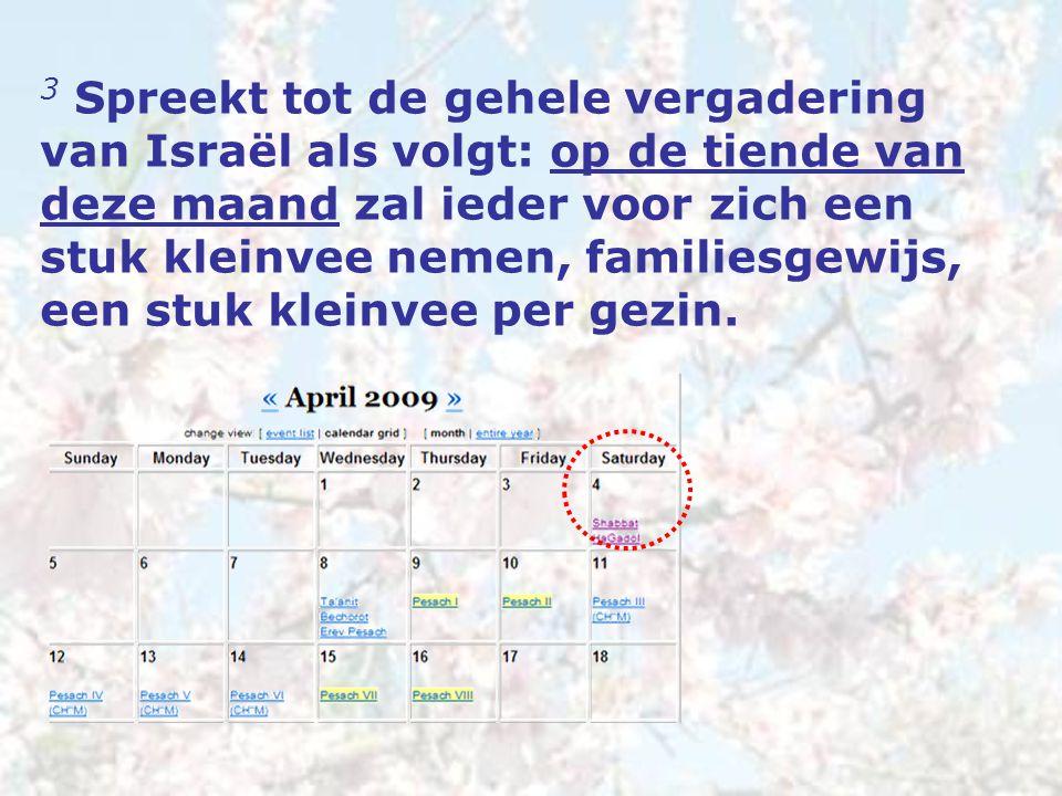 3 Spreekt tot de gehele vergadering van Israël als volgt: op de tiende van deze maand zal ieder voor zich een stuk kleinvee nemen, familiesgewijs, een stuk kleinvee per gezin.