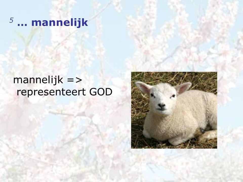 5 … mannelijk mannelijk => representeert GOD
