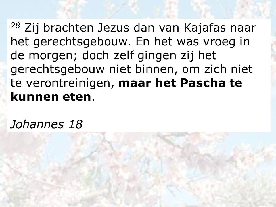 28 Zij brachten Jezus dan van Kajafas naar het gerechtsgebouw