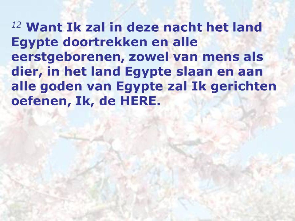 12 Want Ik zal in deze nacht het land Egypte doortrekken en alle eerstgeborenen, zowel van mens als dier, in het land Egypte slaan en aan alle goden van Egypte zal Ik gerichten oefenen, Ik, de HERE.