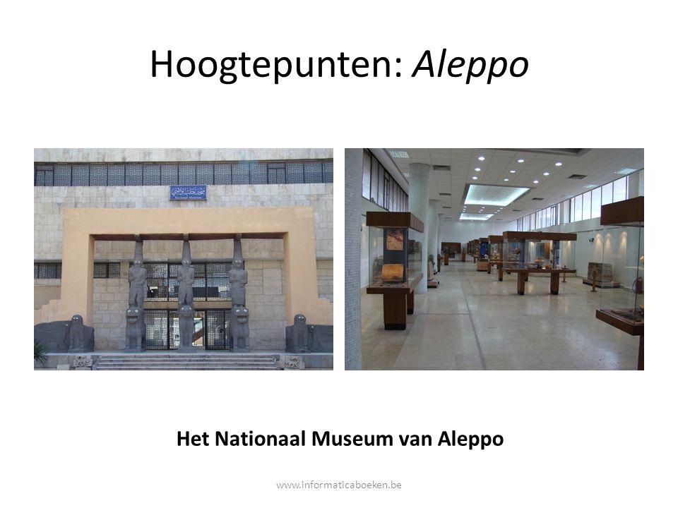 Het Nationaal Museum van Aleppo