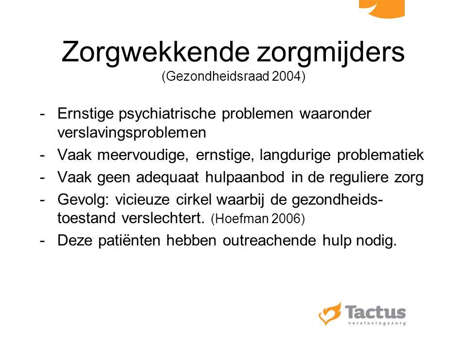 Zorgwekkende zorgmijders (Gezondheidsraad 2004)