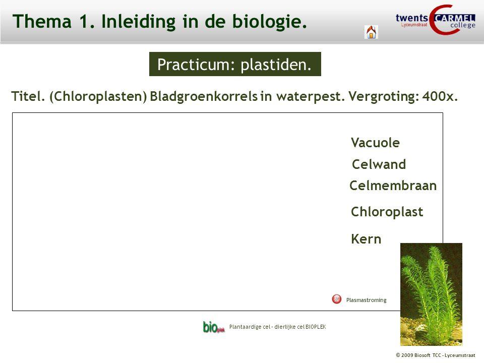 Thema 1. Inleiding in de biologie.
