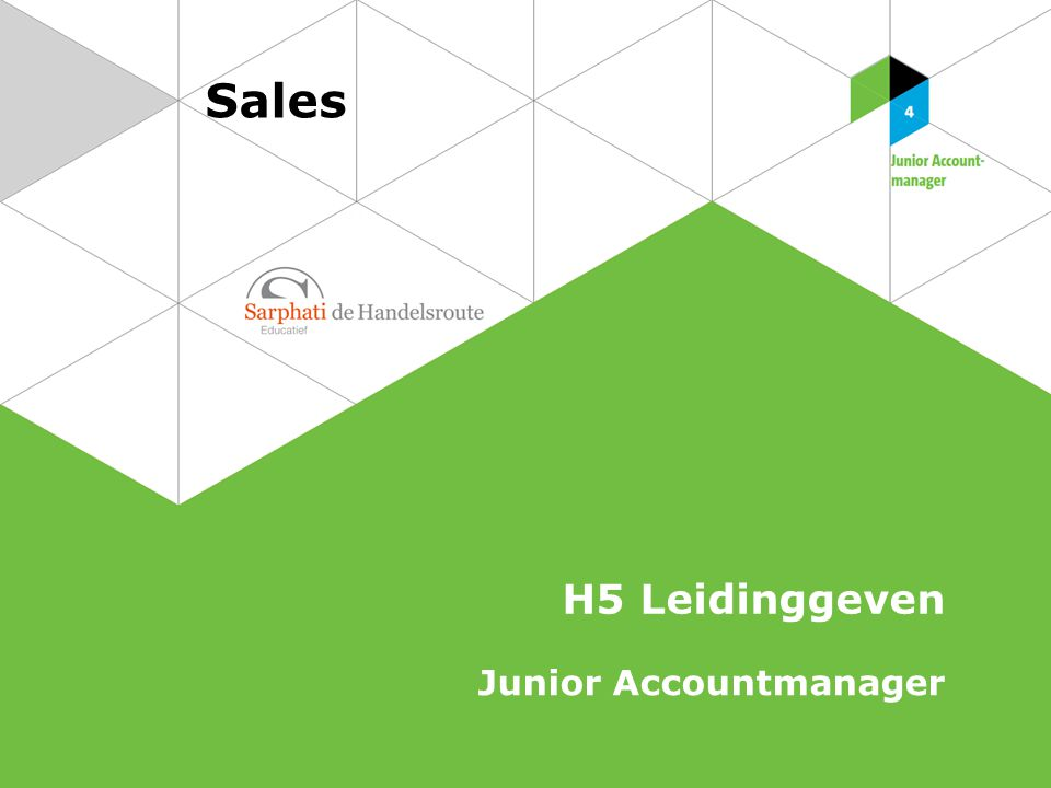 Sales H5 Leidinggeven Junior Accountmanager