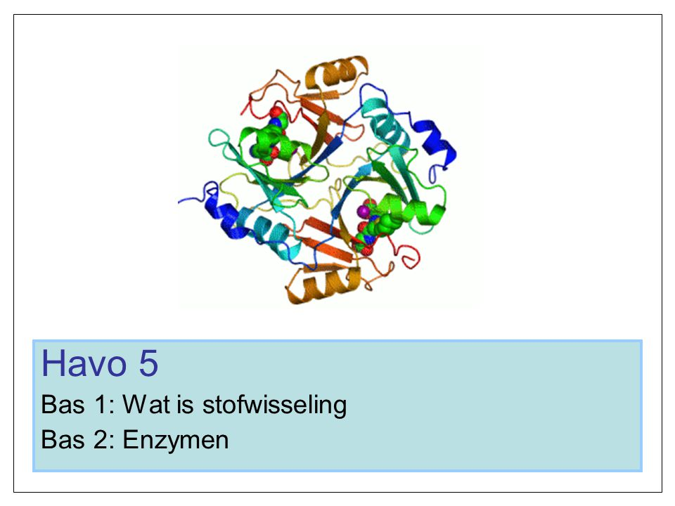 Havo 5 Bas 1: Wat is stofwisseling Bas 2: Enzymen