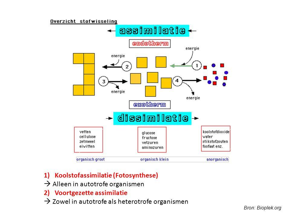 Koolstofassimilatie (Fotosynthese)  Alleen in autotrofe organismen